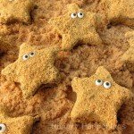 Starfish S'mores - Chocolate dipped homemade star shaped marshmallows coated in graham crackers crumbs.