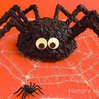 Giant Cake Ball Spider