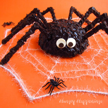 Spider Cake covered in chocolate ganache.