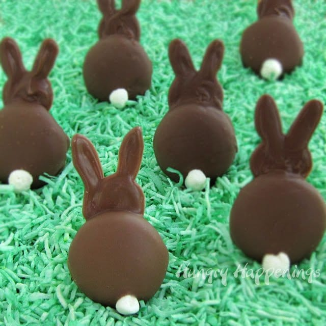 Chocolate bunnies with fluffy white marshmallow tails are sitting upright in green coconut grass.