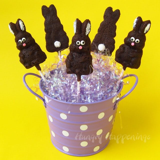 Looking for a cute way to shape your Easter cookies? Well look no further because I have the perfect recipe for you! This recipe will show you How To Bake Cookies in Hard Candy Molds, everyone will be dying to figure out how you made these adorable cookie pops!
