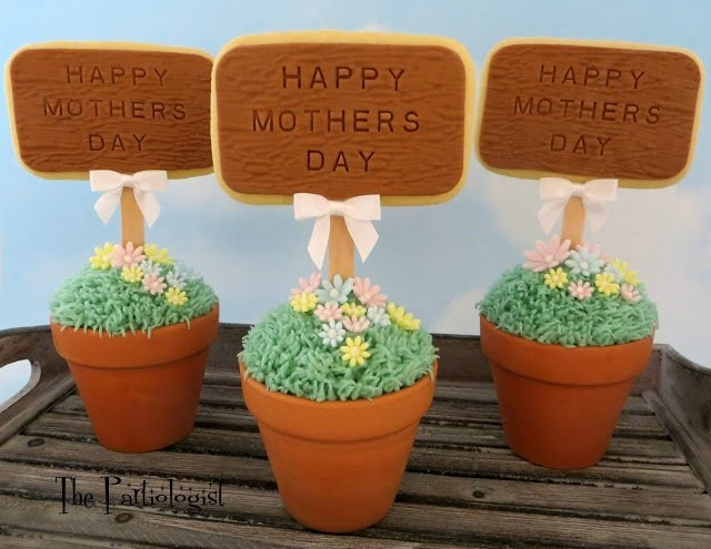 So, today, I called on my wonderful friend, Kim The Partiologist, to help me out, and I couldn't be more excited about the edible crafts she has created for Mother's Day Gifts! These Mother's Day Topiary Cupcakes Topped with Flowers are perfect for that special MOM. They're so beautiful and I know any mother would love them.