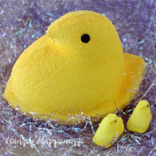 Everyone loves peeps, so why not take your peeps to the next level? For your Easter party make this amazing Giant Homemade Marshmallow Peep, your guests will be absolutely amazed!