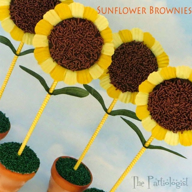 Sunflower Brownies and Ice Cream