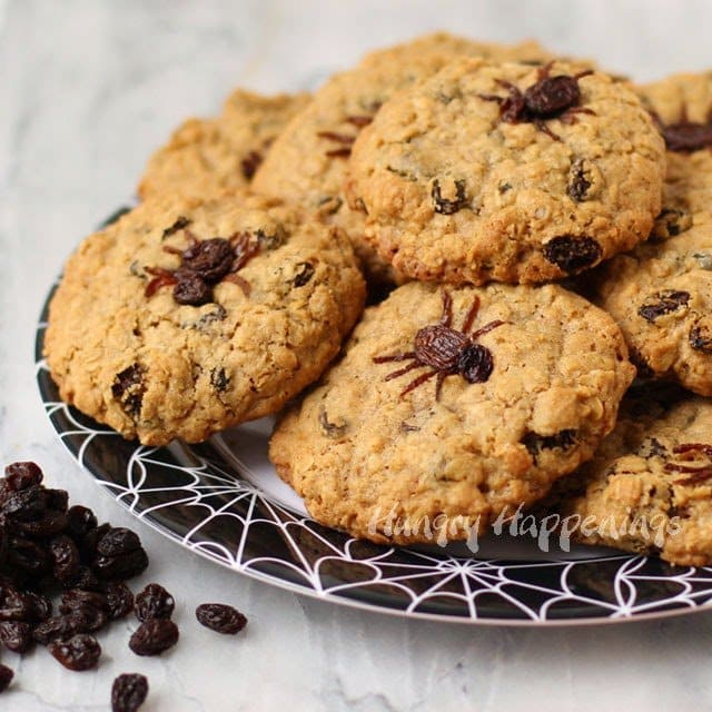 Spider Infested Oatmeal Raisin Cookie Recipe | HungryHappenings.com