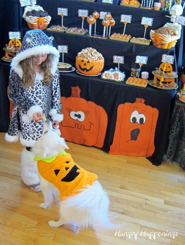 Pumpkin Carving Party Treats for People and Pets | HungryHappenings.com