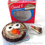 Ice Cream Cookie Cake Turkey for Thanksgiving