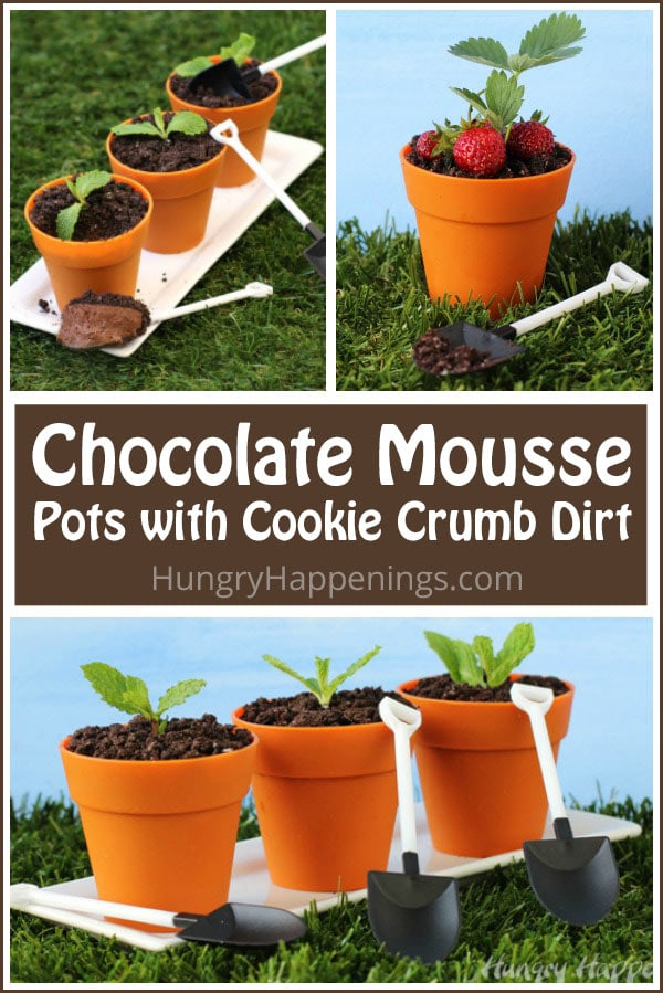 Chocolate Mousse Flower Pots with Chocolate Cookie Crumb Dirt and Mint Leaves or Strawberries.