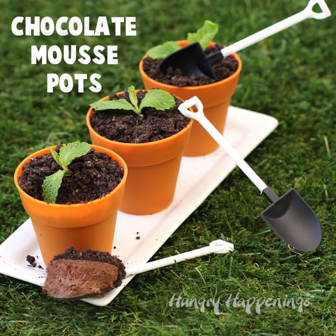 chocolate mousse flower pots topped with cookie crumb dirt and sprigs of mint