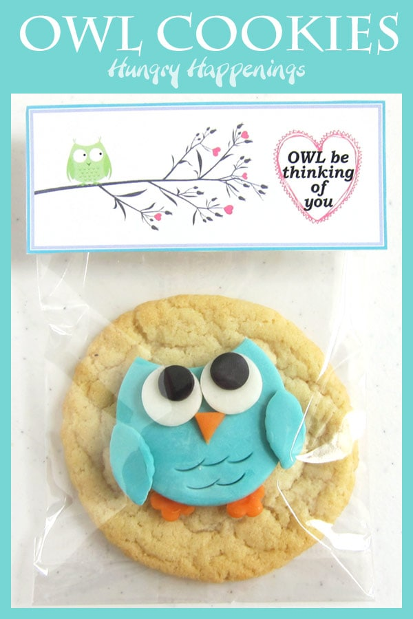 "Teal green modeling chocolate owl on top of a sugar cookie packaged in a clear cellophane bag topped with a tag that says, ""Owl be thinking of you!"""