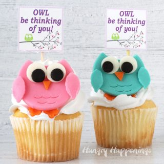 vanilla cupcakes topped with a swirl of whipped icing and decorated with pink and teal colored modeling chocolate owls each with a sign that says, Owl be thinking of you!""