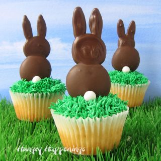 3 cupcakes topped with chocolate bunnies are set on green grass with a blue sky backdrop